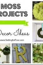 Moss Projects – Décor Ideas