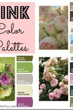 Color Palette – Pink