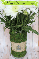 How To Make a Moss Covered Vase