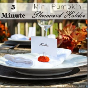 5 Minute Craft – Mini Pumpkin Place Card Holders