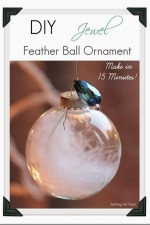 15 Minute Jewel and Feather Ball Ornament