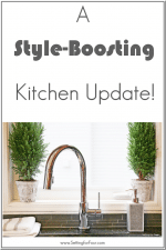 Trinsic Kitchen faucet with Touch2O Technology // Delta Faucet Review