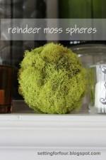 DIY Reindeer Moss Balls – Home Decor Accents