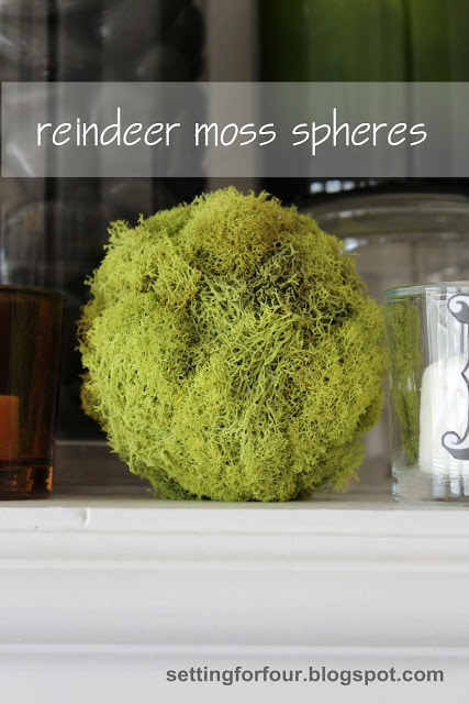 DIY Moss Spheres - quick and so easy to make! For your mantel or fill a big bowl with a few of them and add to your coffee table.