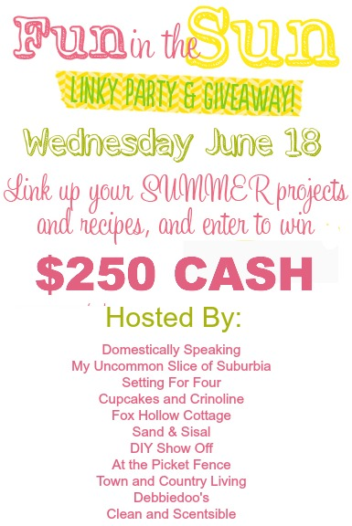 Enter to win $250 Cash and join the linky party - 1 link on 11 blogs!