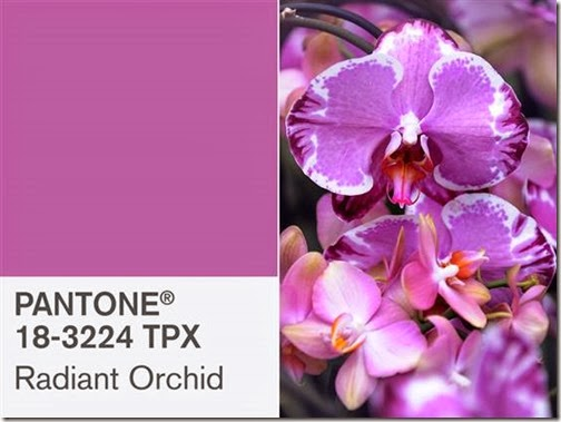 2D9844021-today-pantone-131203-split.blocks_desktop_medium