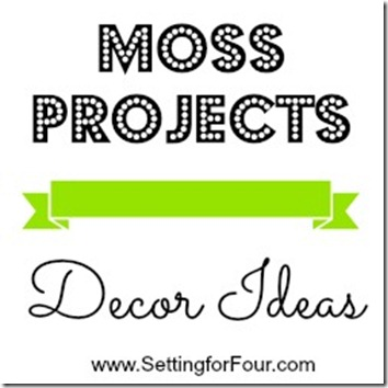 Moss Projects - Decor Ideas from Setting for Four.  See them all here! https://www.settingforfour.com/2013/02/moss-projects-decor-ideas.html #spring #decor #moss