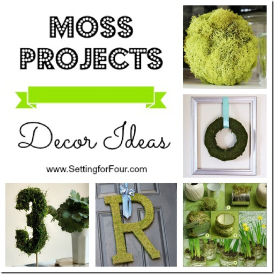 Adding natural moss to your décor is an easy, inexpensive way to bring greenery and nature into your home. See these 5 Beautiful Moss Project DIY Décor Ideas you can make! https://www.settingforfour.com/2013/02/moss-projects-decor-ideas.html #spring #decor #moss