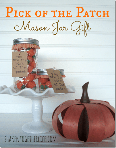 Pick-of-the-Patch-Mason-Jar-Gift-at-shakentogetherlife.com_-799x1024