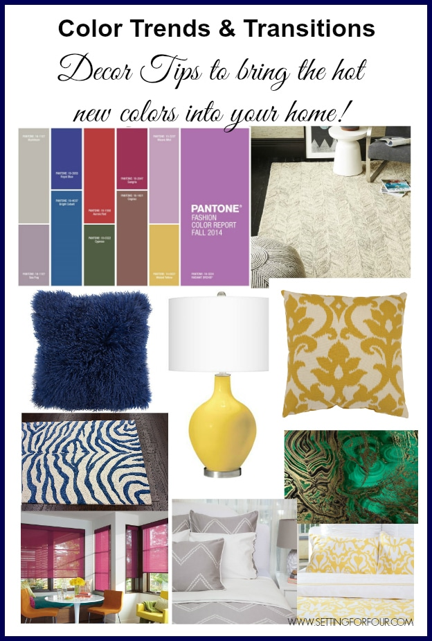 Fall Color Trends And Transitions