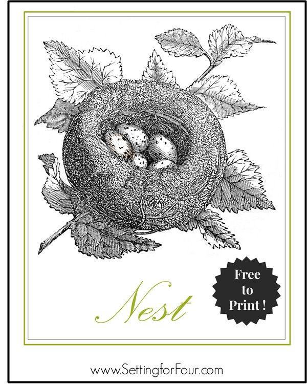Free! Print and Hang this Bird's Nest Printable in your Home! | www.settingforfour.com