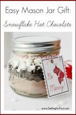 DIY Jar Craft – Holiday Gift Idea
