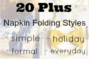 20 Plus Napkin Folding Styles to decorate your table!