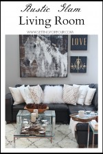 Liviing Room Decor Makeover and Rug Tips
