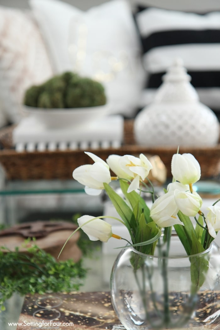 Coffe Table decor - vignette for Spring.