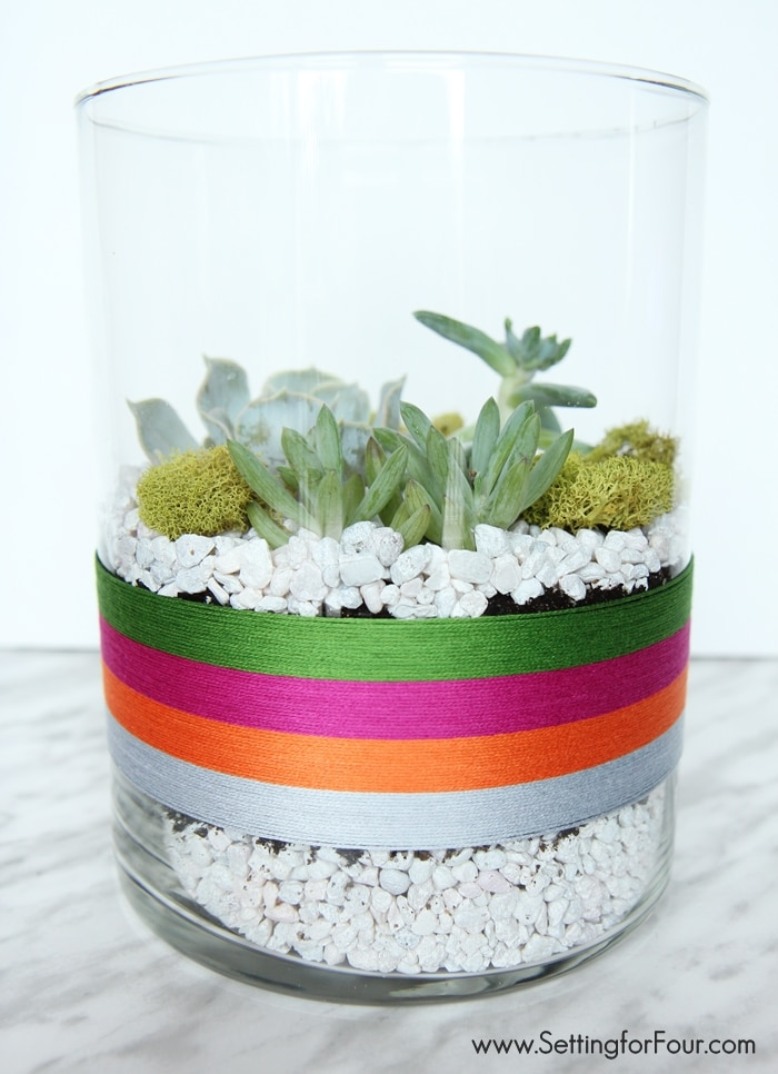 Make this EASY Succulent Terrarium to celebrate Cinqo de Mayo! GORGEOUS festive table centerpiece or coffee table decor for your Mexican fiesta party! www.settingforfour.com