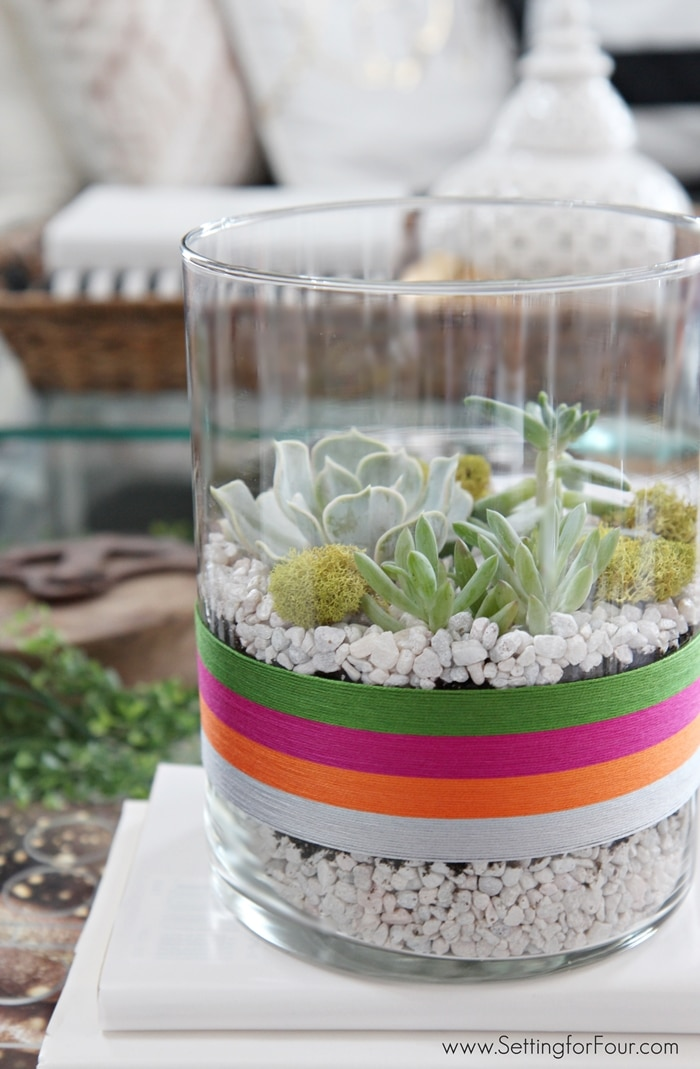 LOVE the BEAUTIFUL serape style of this DIY Succulent Terrarium to celebrate Cinqo de Mayo! GORGEOUS festive table centerpiece or coffee table decor for your Mexican fiesta party! www.settingforfour.com