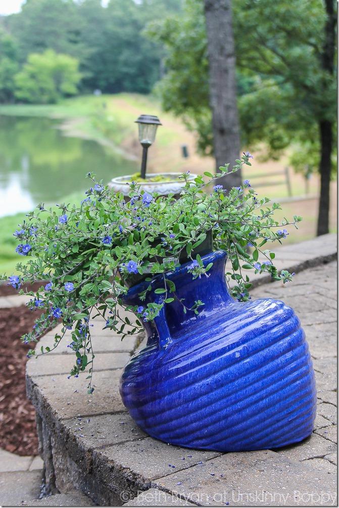 Outdoor planter ideas for summer