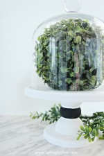 Easy, Affordable DIY Glass Cloche