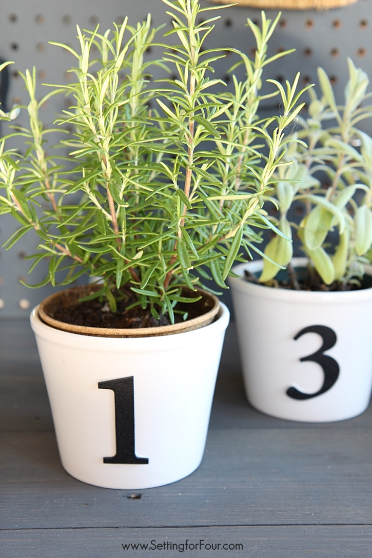 Easy DIY Herb Pots with Numbers - a quick and easy decor accent and herb garden with STYLE to make for your potting bench or kitchen windowsill! Makes a great DIY teacher gift and handmade holiday gift idea too! www.settingforfour.com
