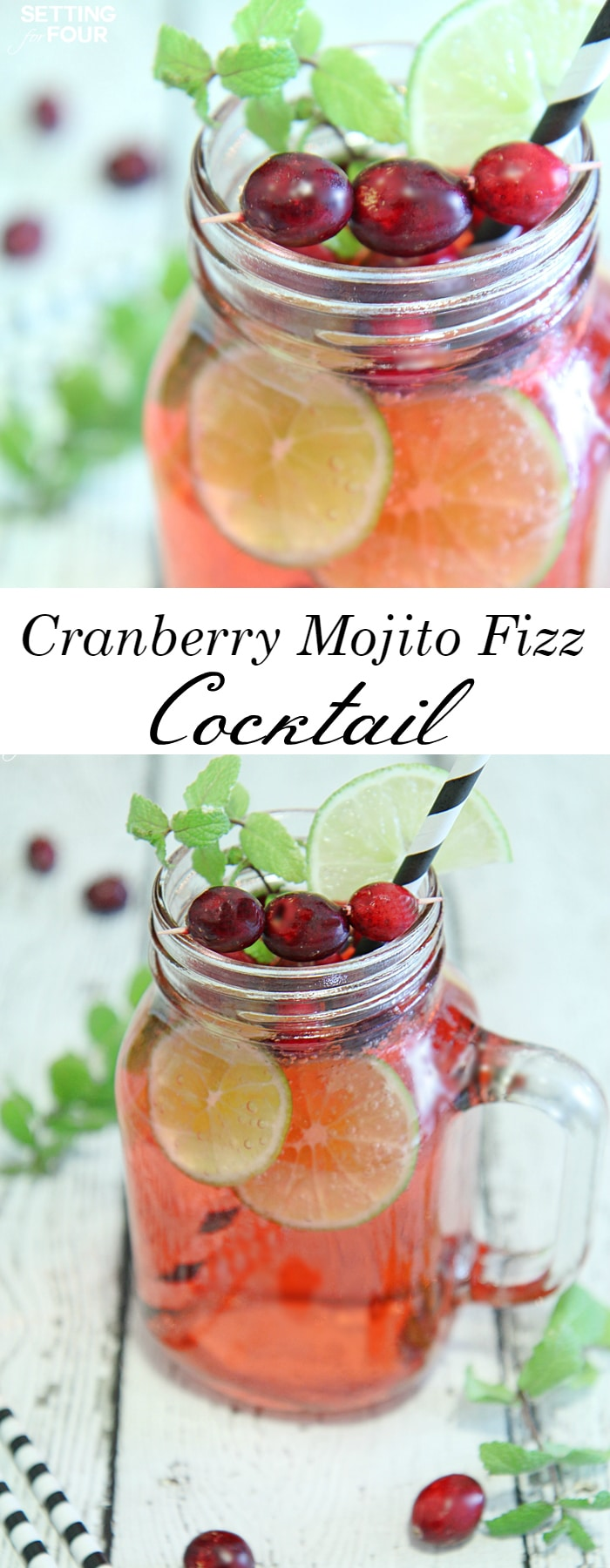 Cranberry Mojito Recipe — Dishmaps