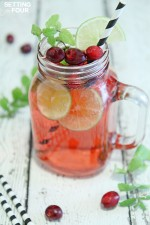 Cranberry Mojito Fizz Cocktail