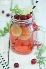 Cranberry Mojito Fizz