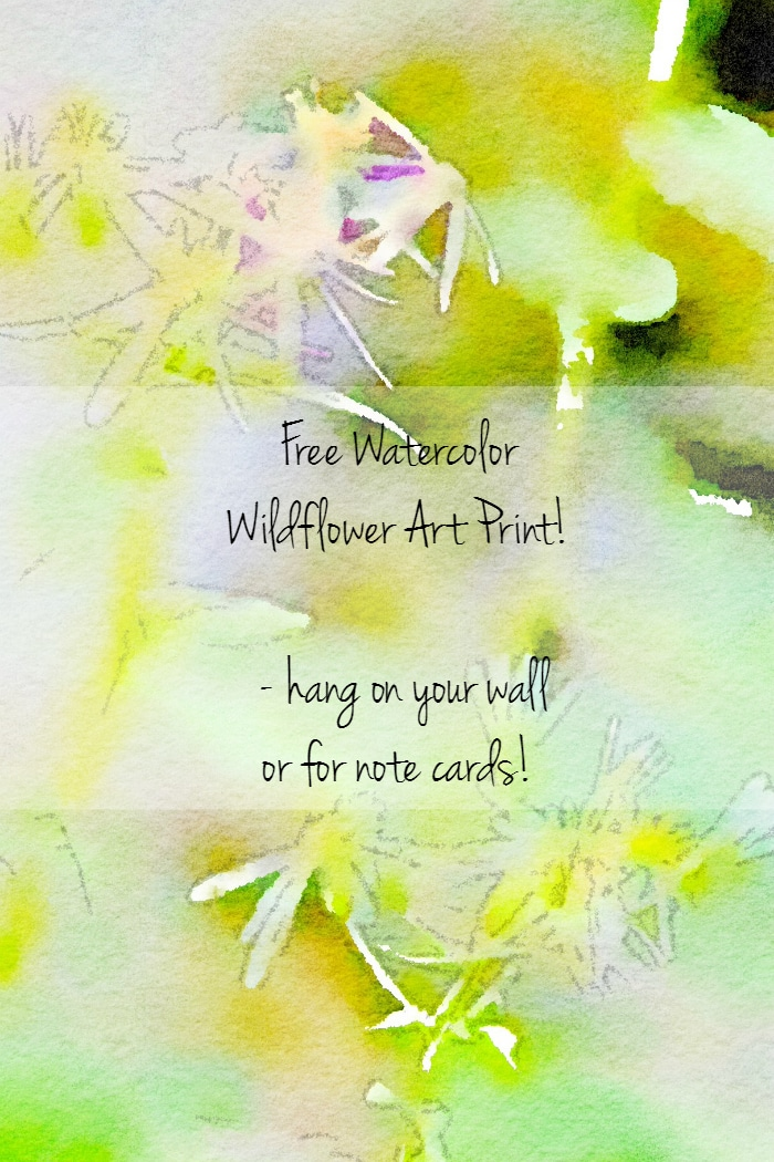 Free Watercolor WildFlower Art - Setting for Four