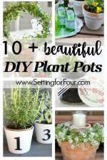 10 Beautiful DIY Plant Pots