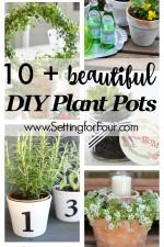 10 Beautiful DIY Plant Pots
