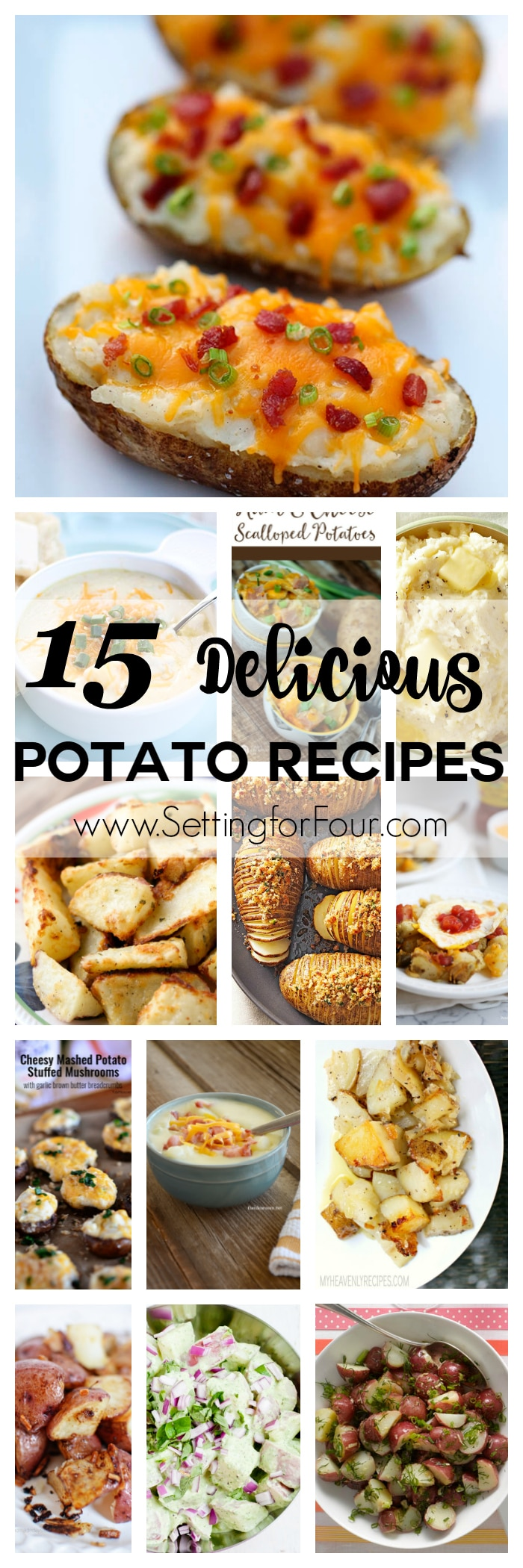 15 Delicious Potato Recipes you have to try! Includes recipes for potato casseroles, soups, baked, fried, mashed and more! www.settingforfour.com