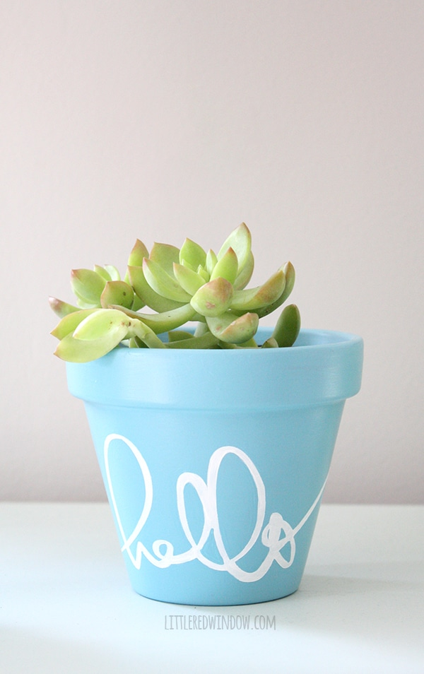 Stenciled pot DIY project.