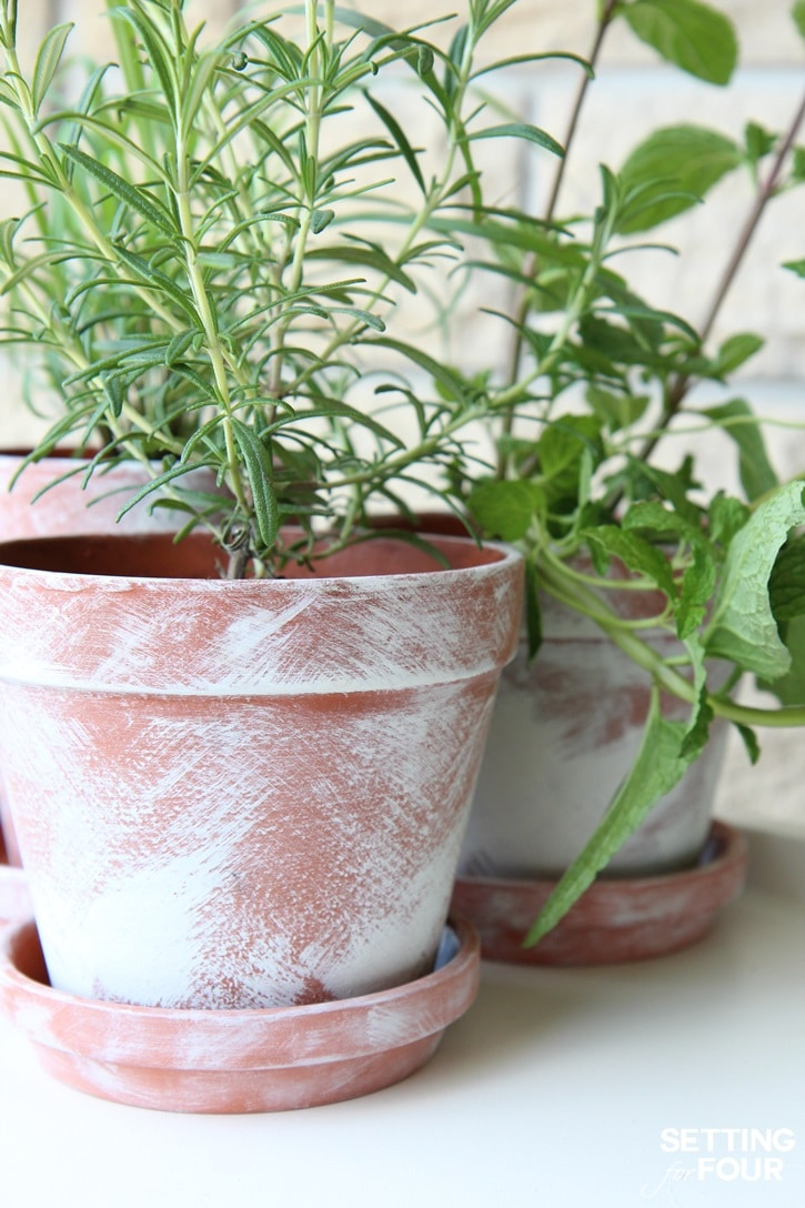 See how to make this easy DIY Pot for your home and outdoor garden. For herbs, flowers and succulents!