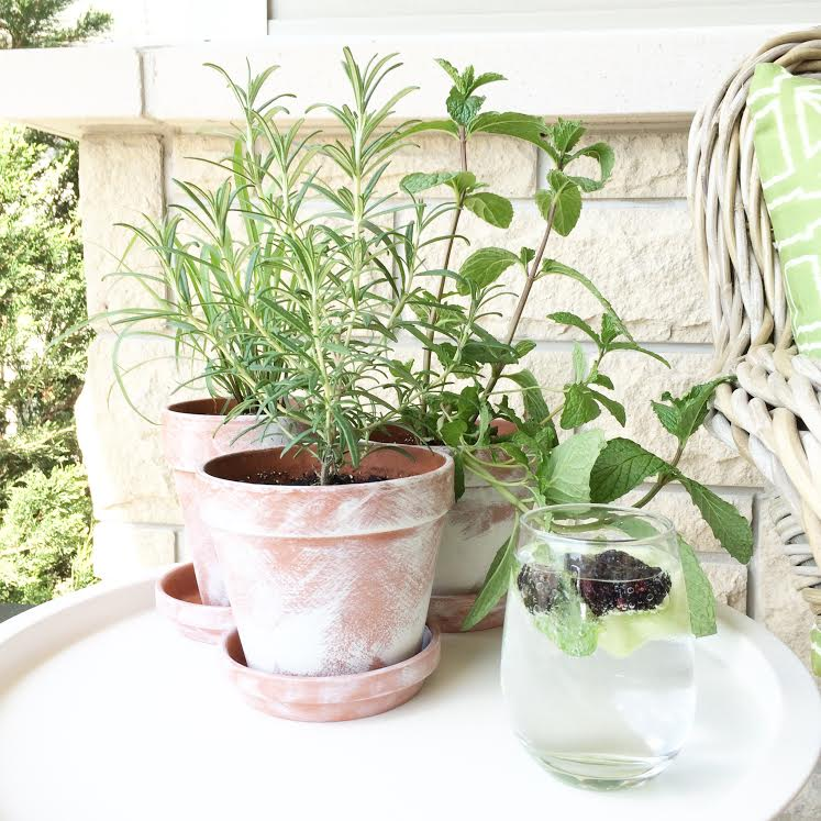 DIY Distressed Terra Cotta Pots for herbs, flowers and succulents