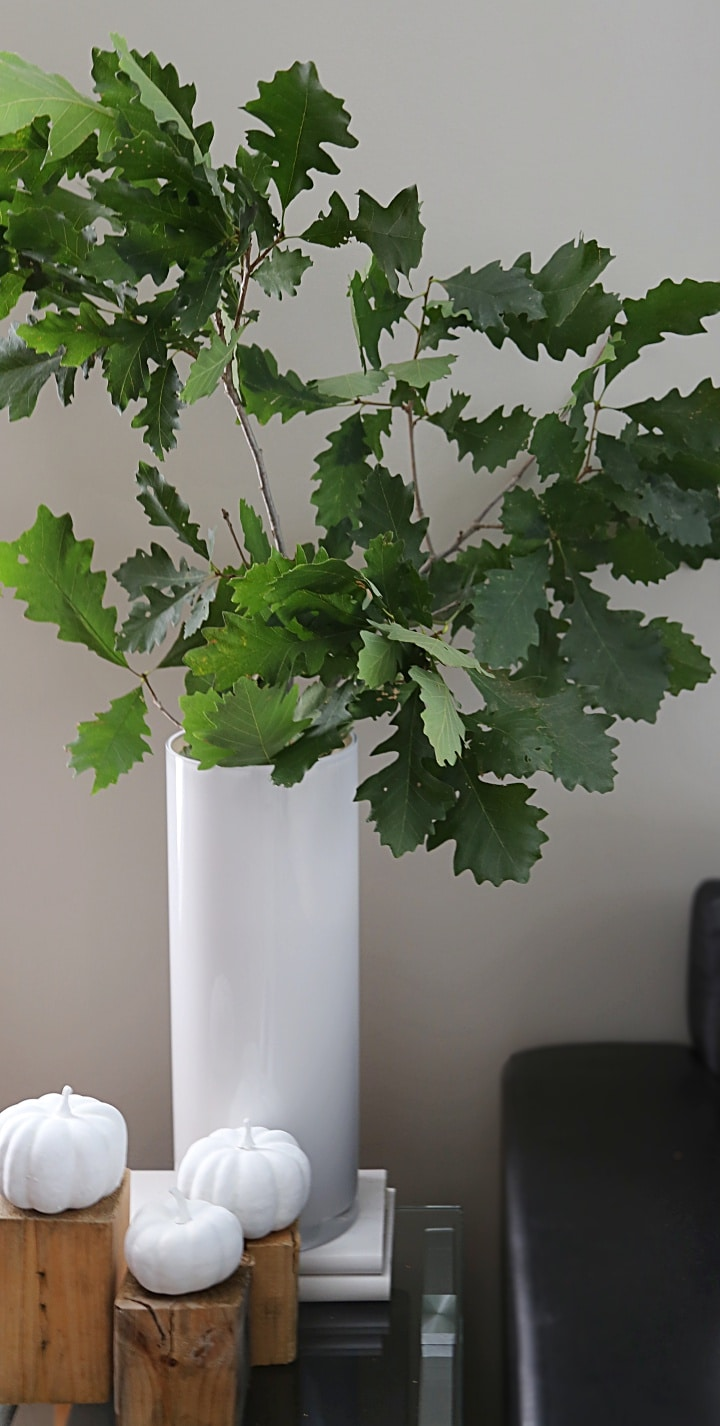 Fall decorating tip: Add a large vase of leafy oak branches to a side table for easy, inexpensive and gorgeous fall decorating!