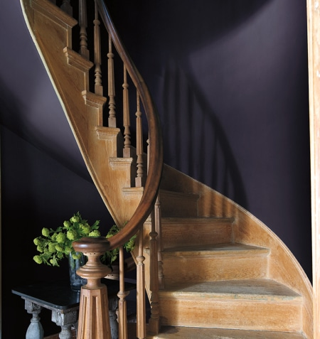 Paint Color Inspiration! Benjamin Moore Color of the Year 2017: Shadow. See what rooms will rock this deep rich plum color!