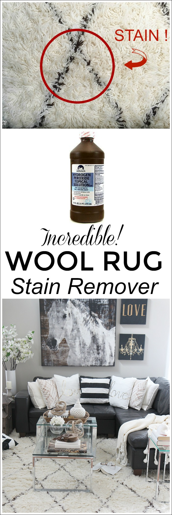 Hydrogen Peroxide Paint Remover