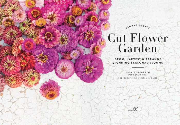 how to grow a cut flower garden setting for four