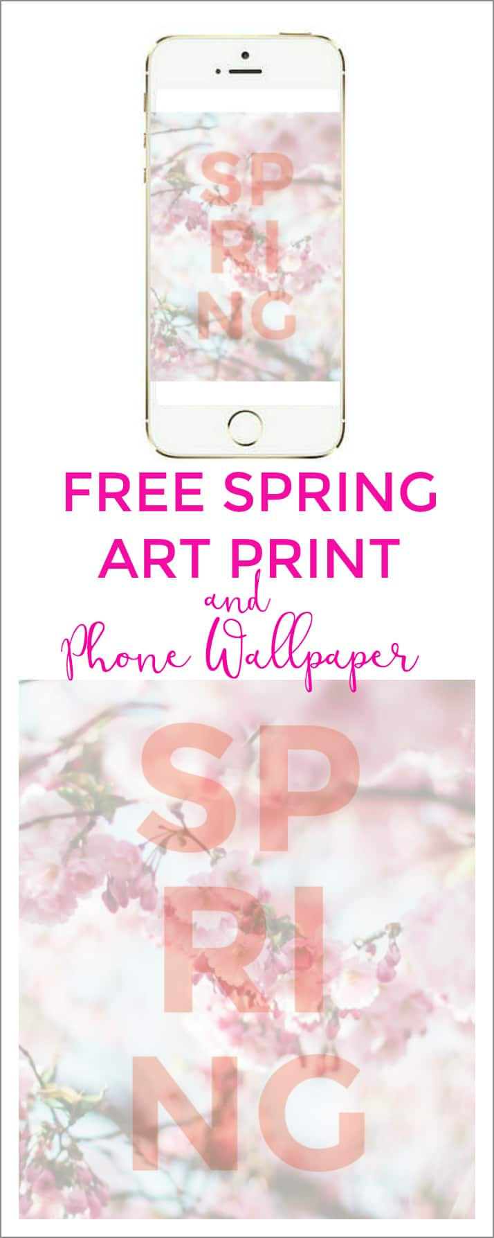 FREE Spring floral art print and phone wallpaper! You can print it and frame it for your art gallery wall and also use it for your phone and iPad wallpaper!