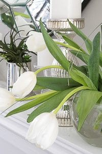 How To Arrange Tulips In A Vase In 5 Easy Steps!