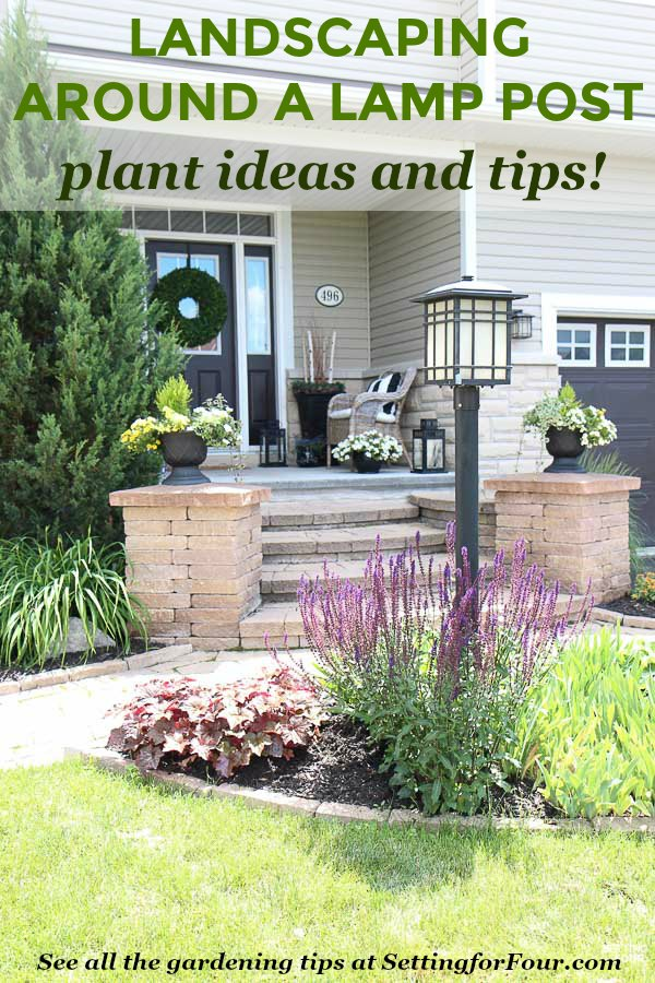 Learn helpful landscaping tips and tricks to hide a lamp post in the front yard. See the types of plants and flowers used to create a flower bed that adds curb appeal!