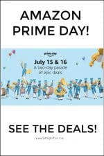 Amazon Prime Day Deals And Beautiful Furniture & Home Decor On Amazon