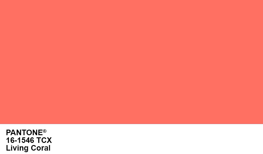Pantone Color of the Year Living Coral #pantone #livingcoral #color #2019 #coral