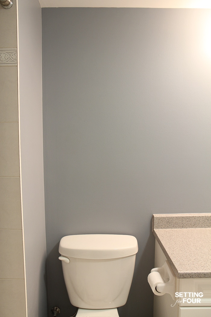 The blue-gray paint color makes this bathroom look dark, cold and sterile.