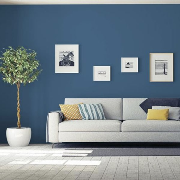 Living room with blue painted walls.