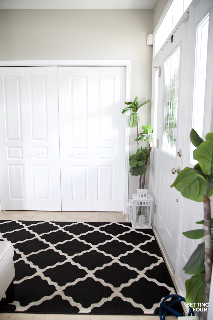 Entryway painted with gray paint. Black and white area rug and fiddle leaf fig trees. White lanterns.