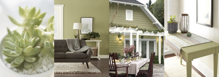 Behr Back To Nature Paint Color - Color Of The Year 2020. Paint color inspiration.