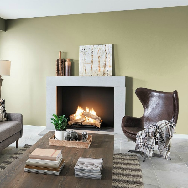 Back to Nature by Behr paint color in a living room - Color of the Year 2020