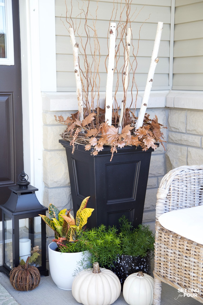 Tall planters by front door decorated for fall with birch branches and curly willow.