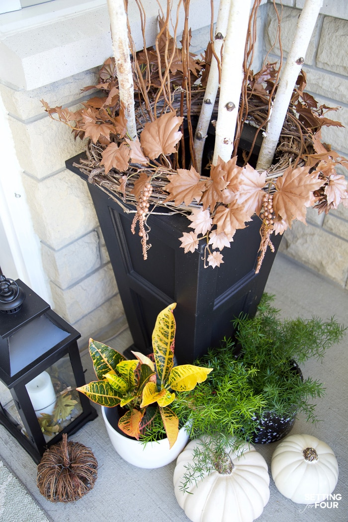 Fall planter with birch branches, pumpkins and fall plants decorating a porch.
